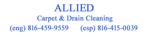 Allied Carpet Cleaning